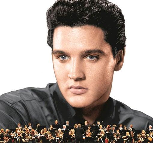 Elvis2017_510x475.jpg