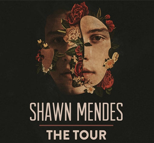 Image result for Shawn Mendes glasgow 2019