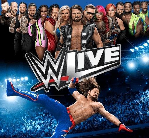 WWE_510x475.jpg